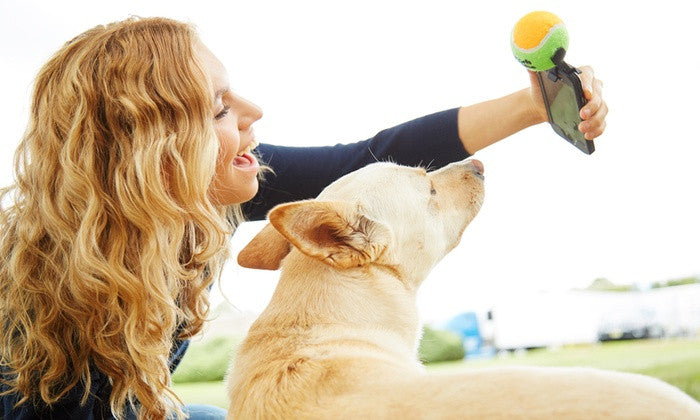 Get Your Dog #SelfieReady - 5 Photo Tips for Dogs