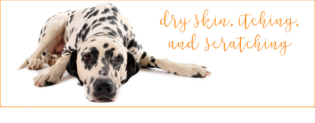 Dry Skin Itching Amp Scratching Isle Of Dogs Wholesale