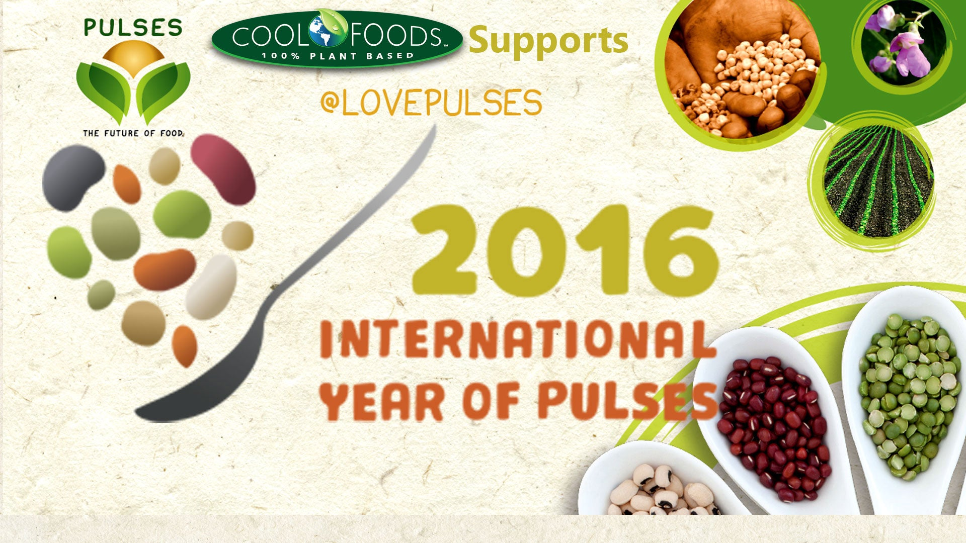 Cool Foods supports the 2016 Year of Pulses