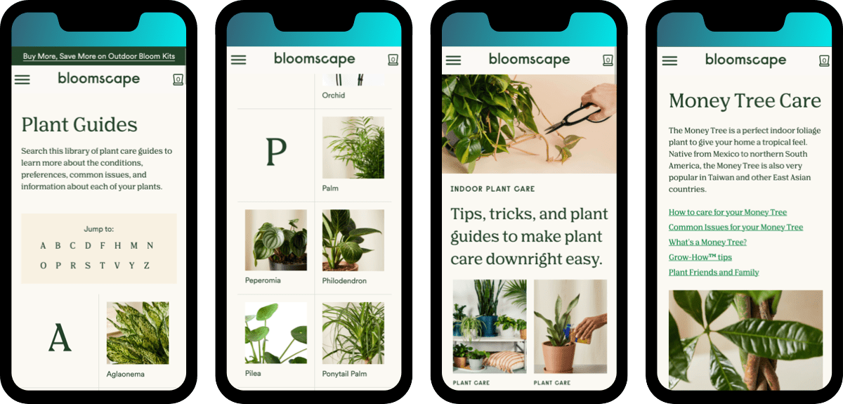 Beginner plant care guide and resources