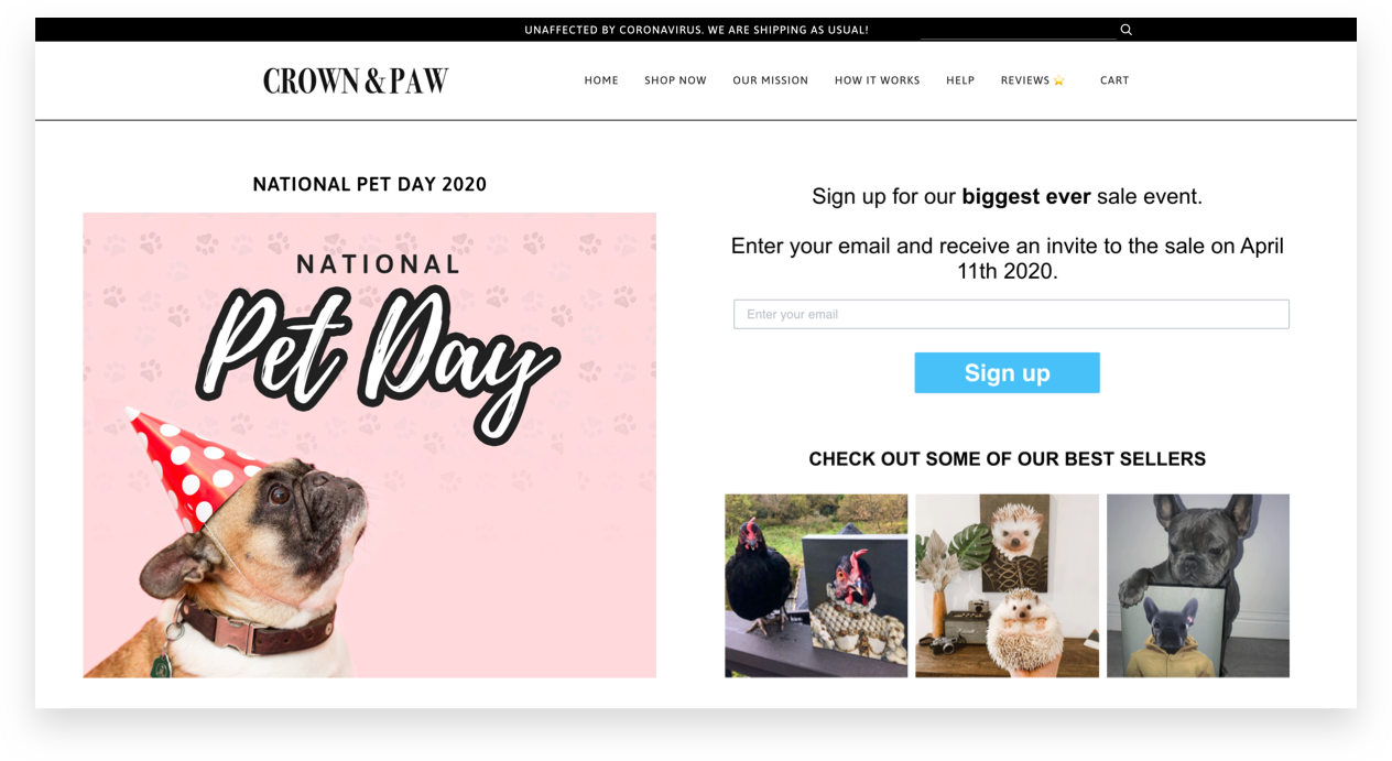 Crown & Paw - National Pet Day Landing Page