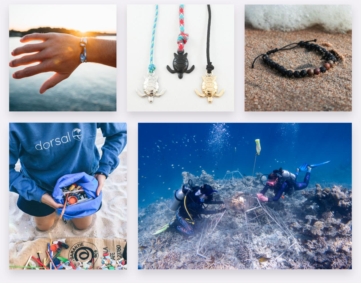Dorsal brand imagery, products, cleaning beaches, coral restoration