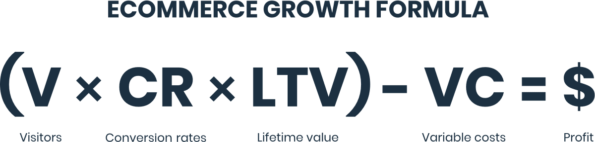 Ecommerce Growth Formula: Visitors times Conversion Rate times Lifetime Value minus Variable Costs equals Profit