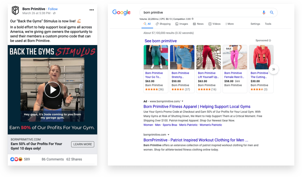 Facebook and Google Shopping Ads Example from Born Primitive