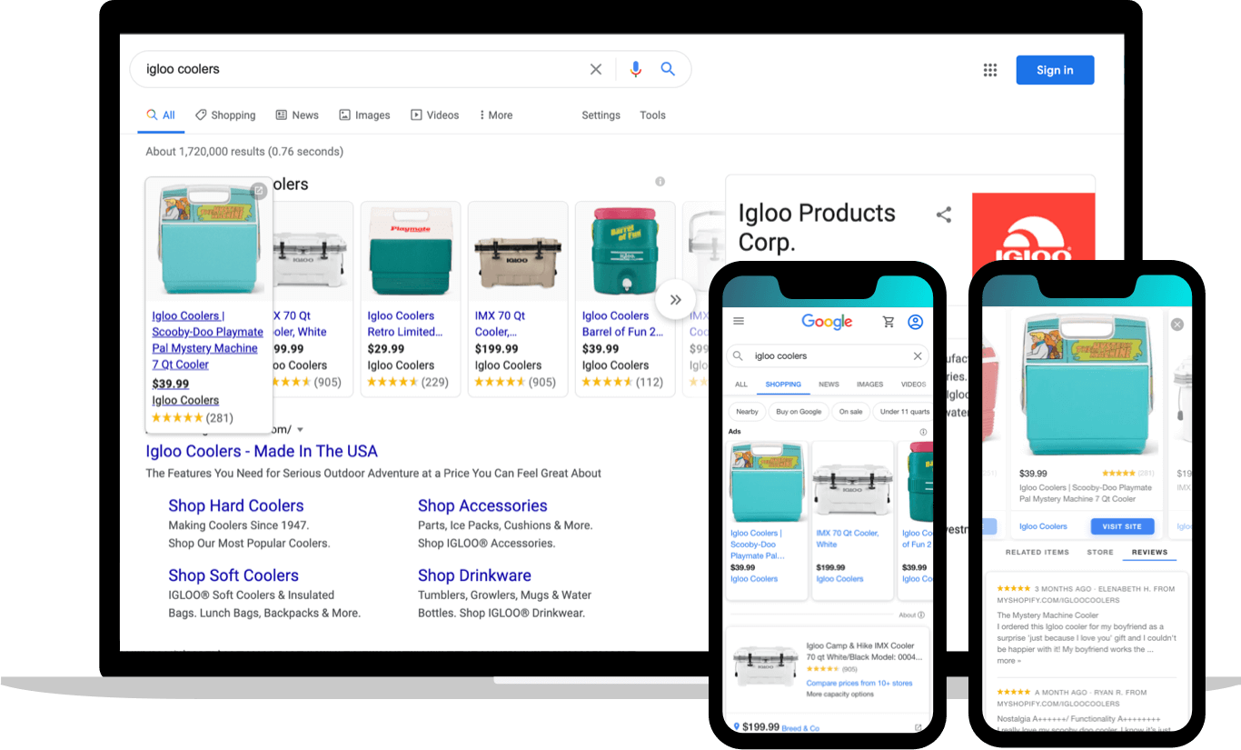 Branded search eccomerce ads through Google Shopping
