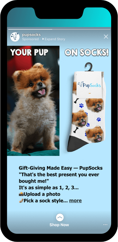 2019 top performing Instagram stories ads: Pupsocks
