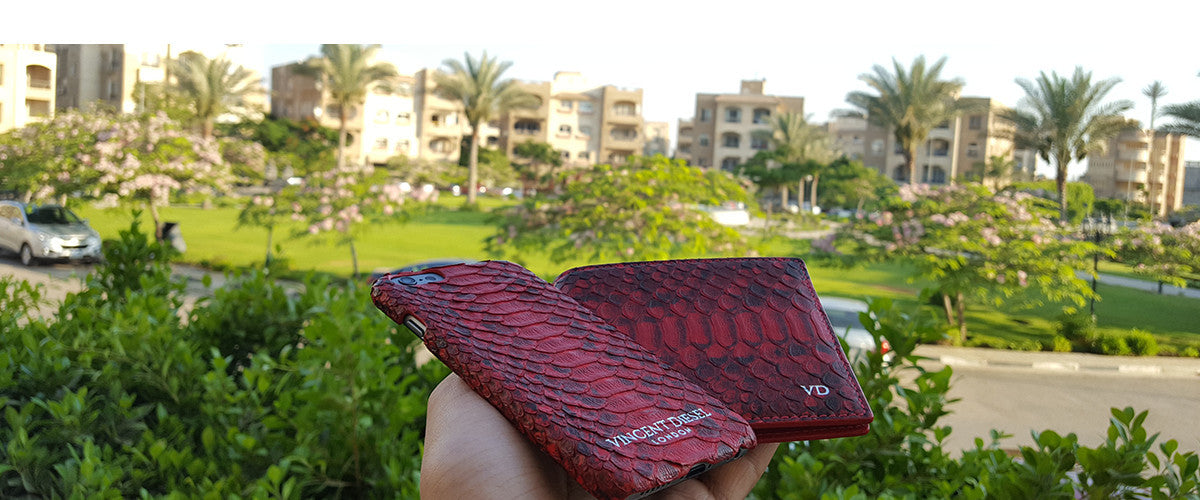 Python phone case fashion and luxury