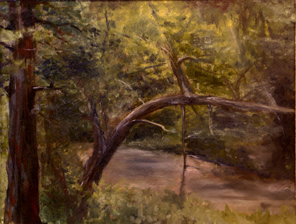 Aloria Weaver - Bull Creek in the Summer, Tarentum