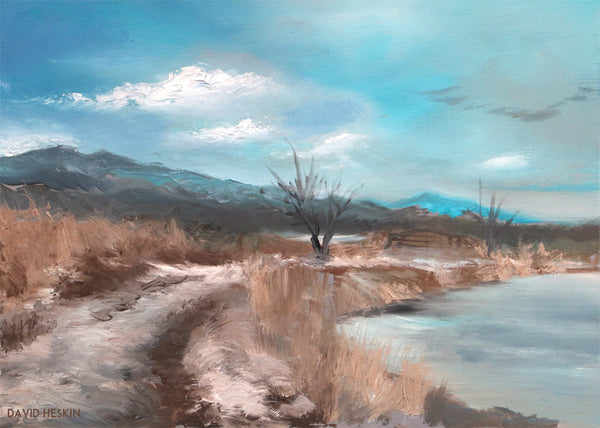 David Heskin - Jayhawker Ponds in Winter