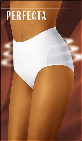 Perfecta Seamless Body Control Brief - Sense Lingerie