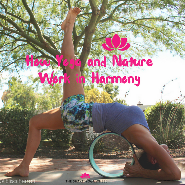 More New Year Resolutions -  How Yoga and Nature Work in Harmony