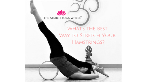 The Shakti Yoga Wheel® Teacher Training 2019
