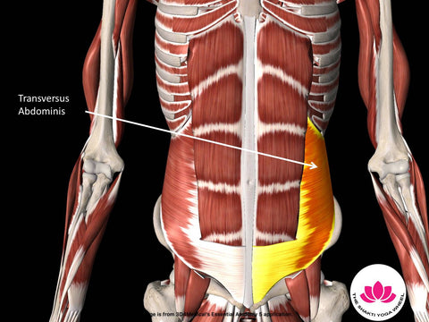 no more back pain tone the right abs  part 1  the
