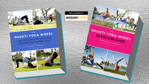 The Shakti Yoga Wheel®Guides