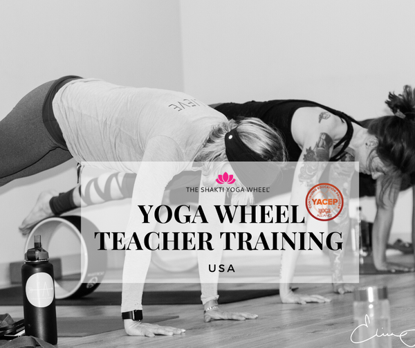 Shakti Yoga Wheel® Intensive Teacher Training - USA