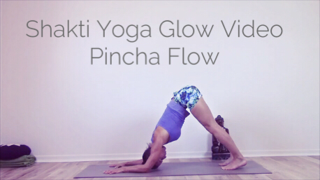 "Video 3 - Shakti Yoga Glow Videoserie -  ""Pincha Flow"" (Core Strength & Inversions) - The Shakti Yoga Wheel"
