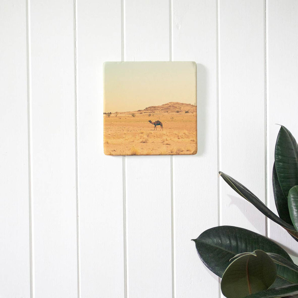 Imogen Stone prints on stone tile