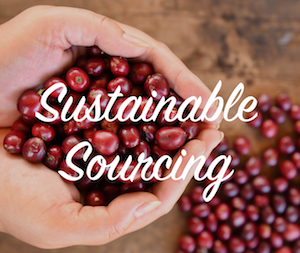 Sustainably Sourcing The Finest Coffees In the World!
