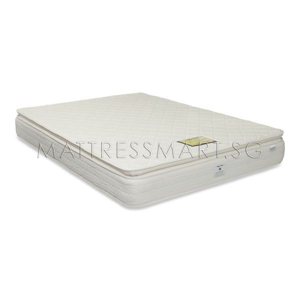 Magic Koil Grand Palais Mattress with Romeo Flat Back Bed Frame (MK12) Package
