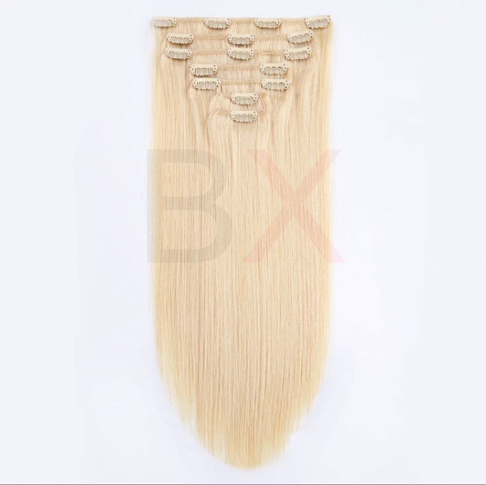 #613 BLONDE STRAIGHT CLIP-INS