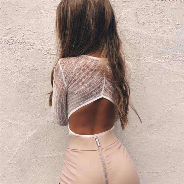 Hollow Out Lace Deep V Long Sleeve Bodysuit Top - Lupsona