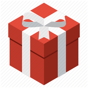 Expedited Shipping and Gift Wrapping - Lupsona