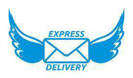 Express Shipping option - Lupsona