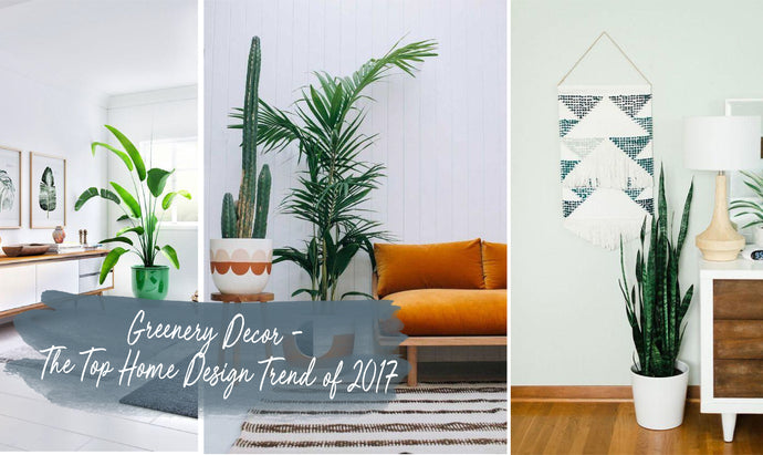 Greenery Decor – The Top Home Design Trend of 2017