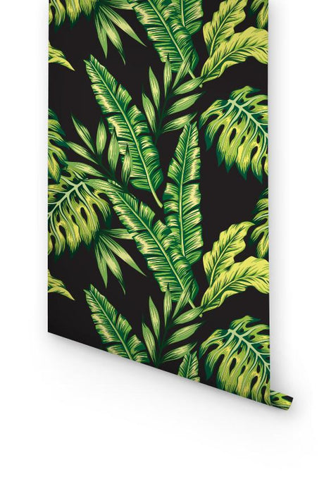 MONSTERA & CYCA WALLPAPER