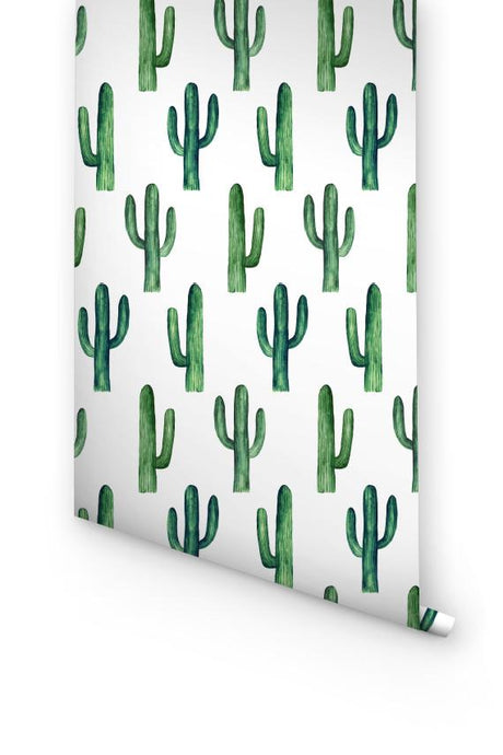 GREEN CACTUS WALLPAPER