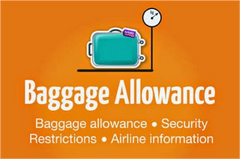 airlines luggage baggage allowance