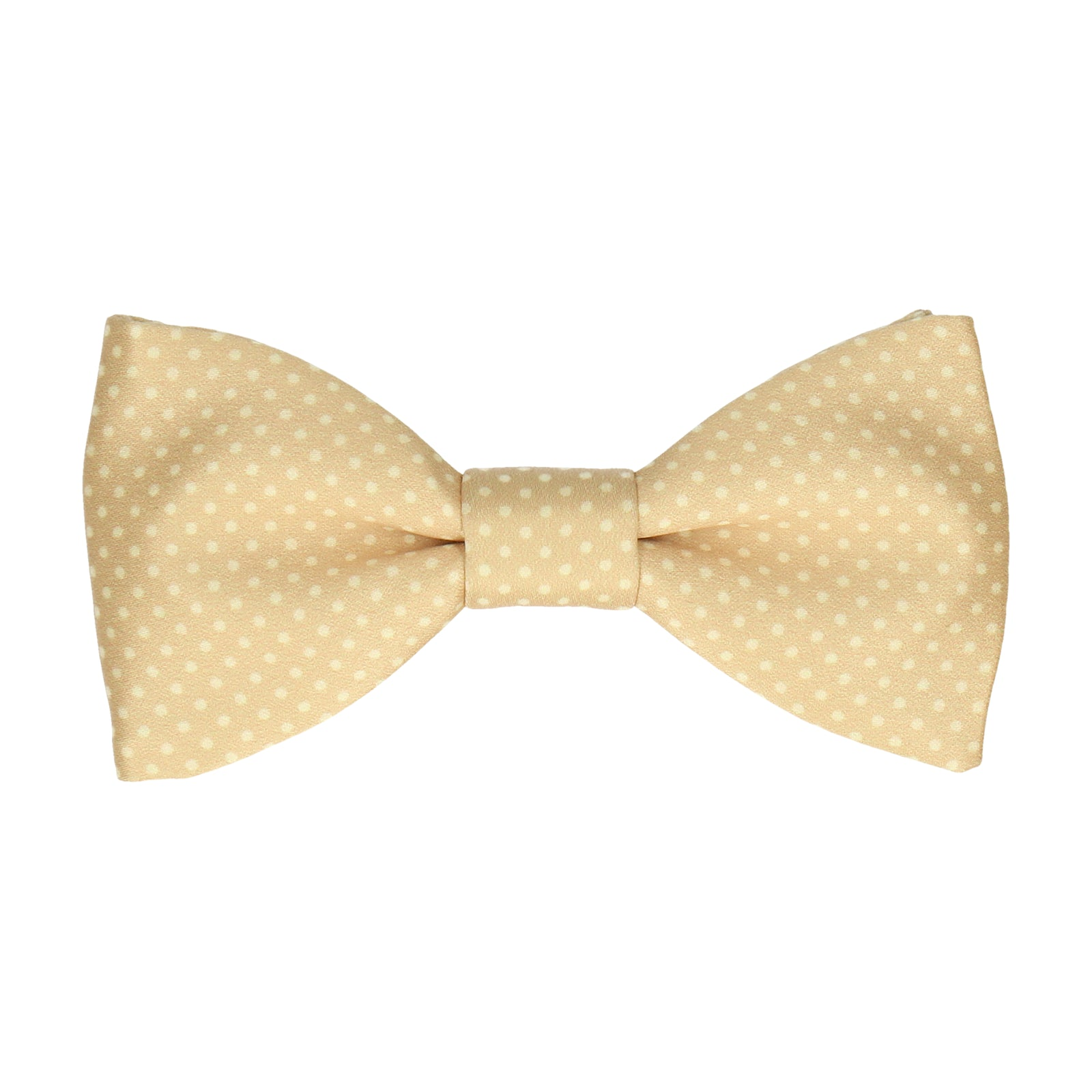 Dickinson in Pure Gold Bow Tie