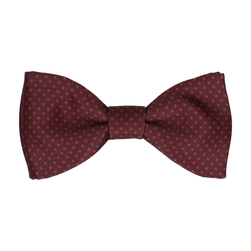 Dickinson in Maroon Bow Tie