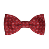 Banbury in Burgundy & Navy Bow Tie