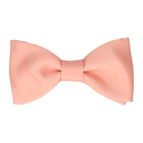 Classic in Apricot Bow Tie