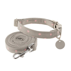 Nala in Grey Dog Collar
