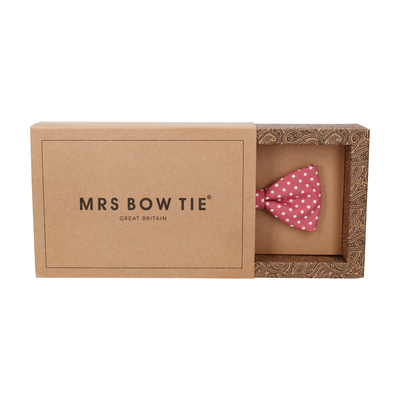 Chiswick in Blush Bow Tie