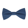 Bidden in Blue Bow Tie