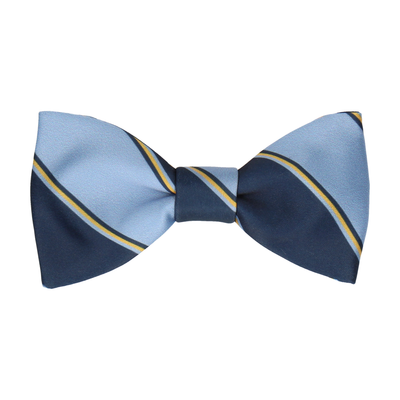 Blue & Yellow Regimental Stripe Bow Tie