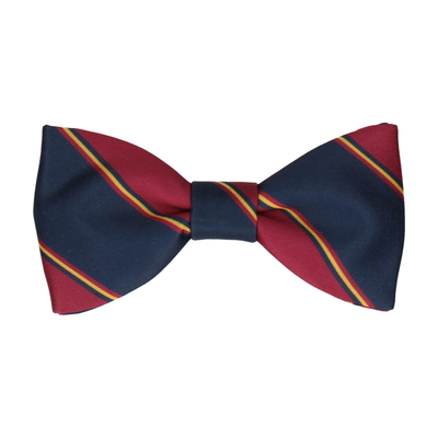 Mulberry & Navy Regimental Stripe Bow Tie