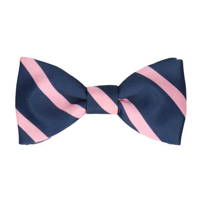 Albion in Pink Bow Tie