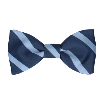 Navy & Blue Stripe Bow Tie