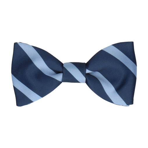 Albion in Steel Blue Bow Tie