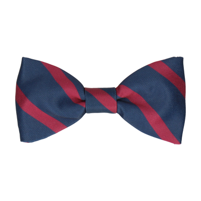 Albion in Mulberry Bow Tie