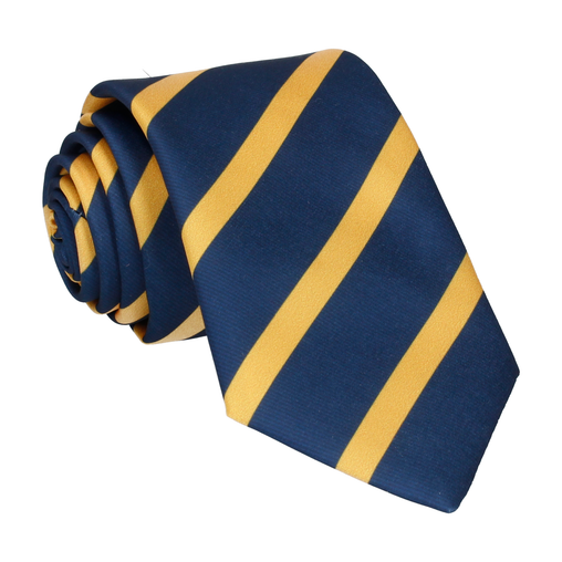 Albion in Mustard Gold Tie