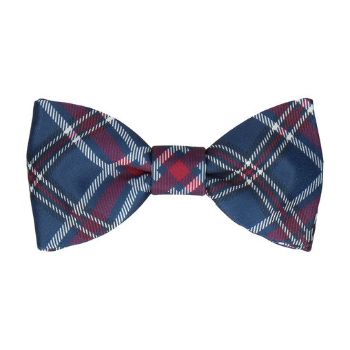 Magnus in Prussian Blue & Mulberry Bow Tie