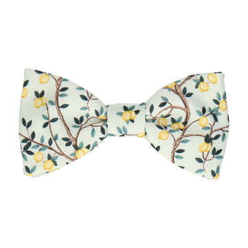 Lemon Tree Light Green Bow Tie