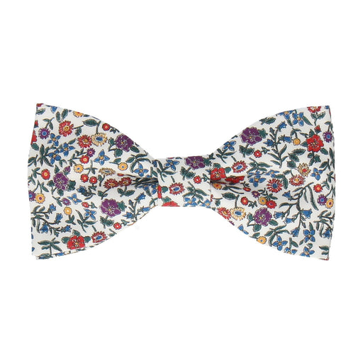 Diderot in Multi Bow Tie -Standard-Pre-Tie- - bowties by Mrs Bow Tie