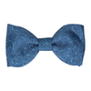 Ellington in Navy & Blue Bow Tie