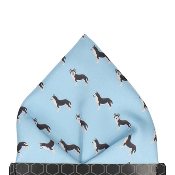 Blue Husky Pocket Square